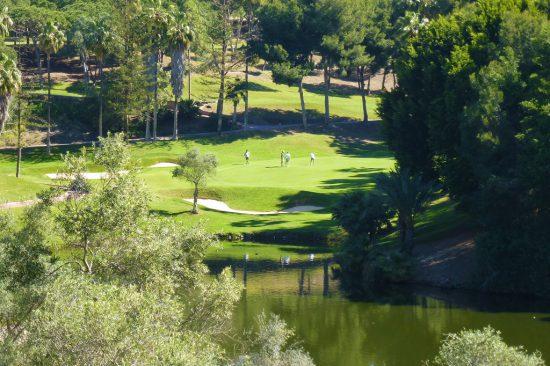 Hole-11-par-3-lake-turtles-back-tee at Golf Torrequebrada